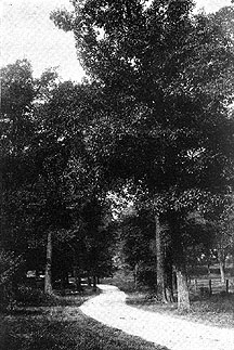 Photo of Farwell Drive, Madison