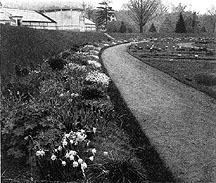 Photo of Botanic Garden, Harvard