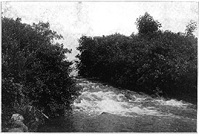 Photo of Tenney Park Cascade, Madison