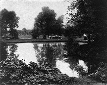 Photo of Picnic in Tenney Park, Madison