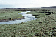 Color photo of Boar River, small version.
