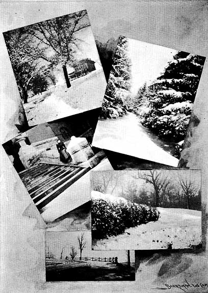 Image of WINTER SCENES
