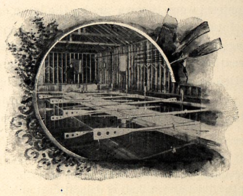 Image of In the Rowing Tank