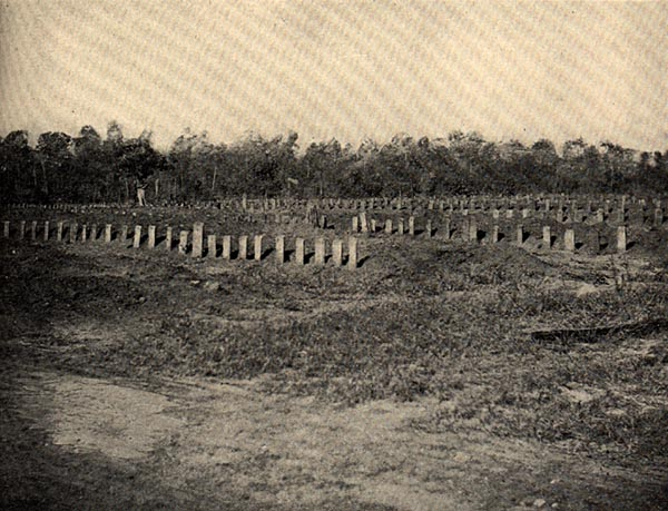 Image of Cemetery at Andersonville Prison